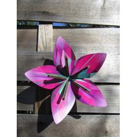 Flower 243